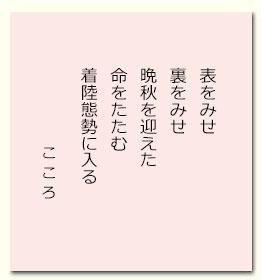 201611kokoro.jpg