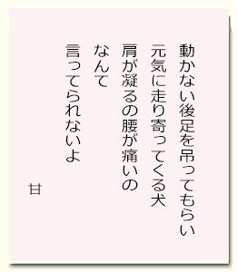 甘12.jpg