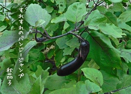 akinasubi20170916.jpg