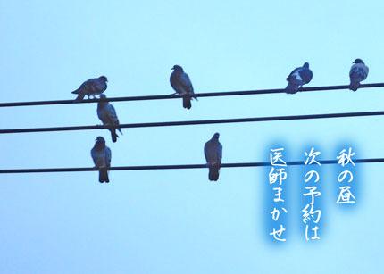 akinohiru20170905.jpg