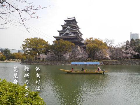 hanami201903301.jpg