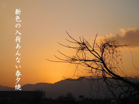 haruyuuyake20190206.jpg