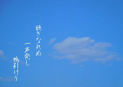 hikigamo2732.jpg