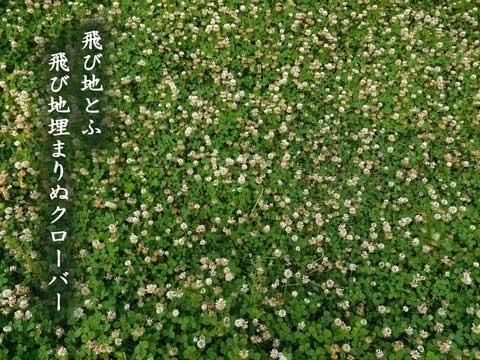 kuro-ba-20190512.jpg