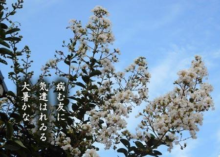 taisyo20180730.jpg