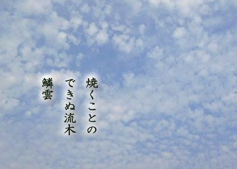 urokobumo20180912.jpg