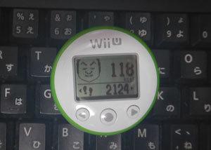 wiiuDSCN0524.jpg