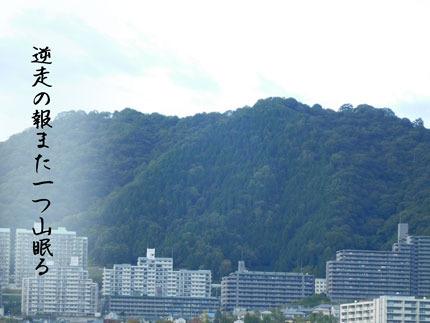 yamanemuru20171215.jpg